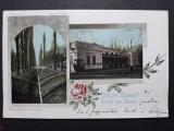 BUZIAS - ANUL 1901 - CLASICA - CIRCULATA BUZIAS BRASOV, Fotografie