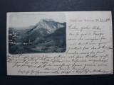 RASNOV - ROSENAU - ANUL 1898 - CLASICA - RARA - CIRCULATA LOCO BRASOV, Fotografie