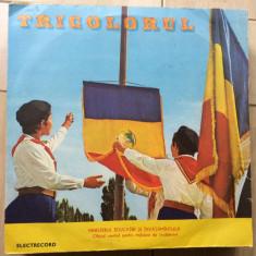 Tricolorul cantece patriotice disc vinyl lp muzica corala pionieri cor cs 102, VINIL, electrecord