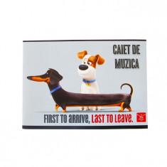 Caiet 24 file muzica Pigna Premium Pets