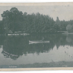 3700 - CRAIOVA, Romania, Bibescu Park - old postcard, real PHOTO - used - 1924, Circulata, Fotografie