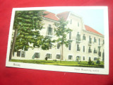 Ilustrata Buzias- Hotel Muschang 1927 GBT ,color, Necirculata, Printata