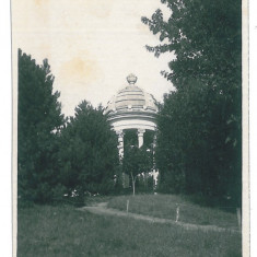 3869 - CRAIOVA, Romania, Bibescu Park - old postcard, real PHOTO - unused, Necirculata, Fotografie