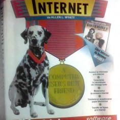 Succes cu Internet de Allen L. Wyatt, All