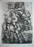 """Gravura aquaforte/hartie bumbac Chirnoaga """"Taur"""" 1977 ex. 29/70 , 58x40 cm, Animale, Cerneala, Suprarealism"""