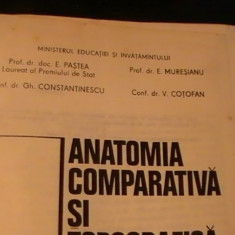 ANATOMIA COMPARATIVA SI TOPOGRAFICA A ANIMALELOR DOMESTICE-EUSEBIU PASTEA-, Alta editura