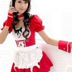 A141 Costum tematic chelnerita, S