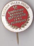 Insigna Simpozion National Sept 1994 Petrosani, Salvam Valea Jiului