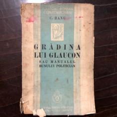 GRADINA LUI GLAUCON - C. BANU