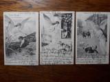 CARTI POSTALE COPII - 1902 - CLASICE - CIRCULATE MEDIAS - BRASOV - LOT DE 3 BUC., Circulata, Fotografie