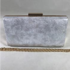 Clutch/plic dama argintiu+CADOU