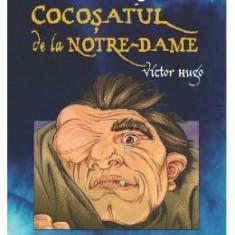 Cocosatul de la Notre-Dame (Ro + Eng) - Victor Hugo