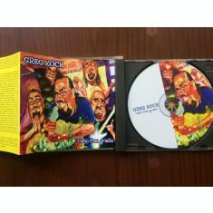 greg koch radio free gristle album cd disc muzica blues rockmade in rusia 2003