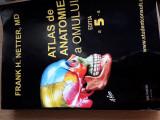 NETTER ATLAS DE ANATOMIE A OMULUI editia a5a