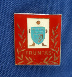 Insigna Fruntas in Protectia muncii - Rara