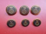 Lot 6 nasturi metal, auriu cu argintiu, insemne heraldica