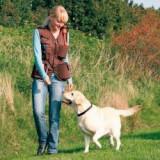 Vestă de antrenament, pentru activitatea câinelui, - maro, XL