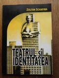 TEATRUL SI IDENTITATEA-  ZOLTAN SCHAPIRA, 2005