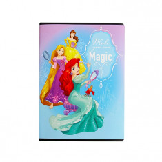 Caiet A5 48 file matematica Pigna Premium Princess