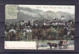 SINAIA  VEDEREA MUNTILOR BUCEGI DIN PARC  CLASICA  CIRCULATA 1906 TCV, Printata