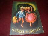 FRATII GRIMM - HENSEL SI GRETEL