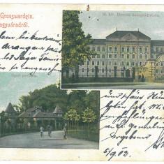2556 - ORADEA, Litho - old postcard - used - 1902 - Carte Postala Crisana pana la 1904, Circulata, Printata
