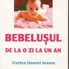 Bebelusul de la o zi la un an - Carte Ghidul mamei