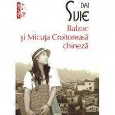 Balzac si Micuta Croitoreasa chineza - Roman