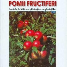 Pomii fructiferi - Adrian Chira, Lenuta Chira, Fl. Mateescu - Carte gradinarit
