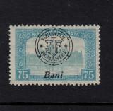 EMISIUNEA ORADEA PARLAMENT 1919 - 75 FILLER EROARE SUPRATIPAR  - MNH