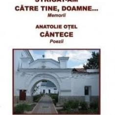 Strigat-am catre Tine, Doamne - Aspazia Otel Petrescu - Carti Crestinism