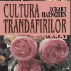 Cultura trandafirilor - Carte gradinarit