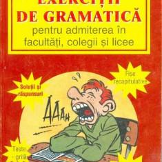 Exercitii de gramatica - Elena Vinti-Filimon