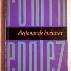 Serban Andronescu – Dictionar de buzunar roman-englez