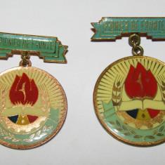 Lot 2 insigne pionier - Pionier de Frunte (diametre diferite)