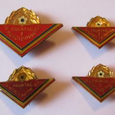 Lot 4 insigne pionier - Fruntas in Munca Patriotica
