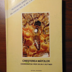 Cresterea matcilor - Prof. Dr. F. Ruttner (Apimondia, 1980) CARTONATA, ORIGINALA - Carti Agronomie