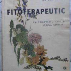 Index Fitoterapeutic - Em. Grigorescu, I. Ciulei, Ursula Stanescu, 412549 - Carte Medicina alternativa