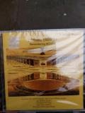 Cornel Țăranu - remembering Nichita Stănescu - Sorin Dumitrescu, CD