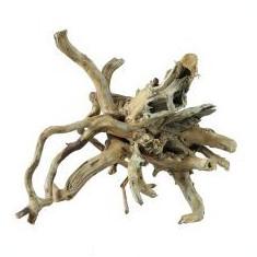 Old Twity Wood rădăcină pentru acvariu - 20, 5 x 18 x 15, 5 cm - Carte Postala Oltenia 1904-1918