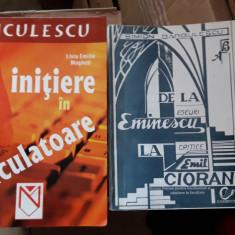 INITIERE IN CALCULATOARE - LIVIA EMILIA MAGHETI - NICULESCU - Carte baze de date