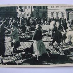 Carte postala Timisoara - Piata Unirii RPR necirculata - Carte Postala Banat dupa 1918, Printata