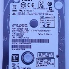 Hard Disk Laptop 250 Gb HGST - HDD laptop