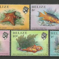 Belize 1984 - fauna marina, serie neuzata - Timbre straine