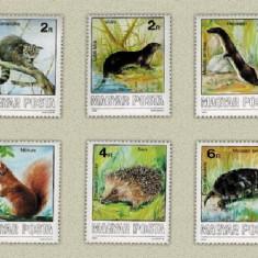 Ungaria 1986 - animale, serie neuzata