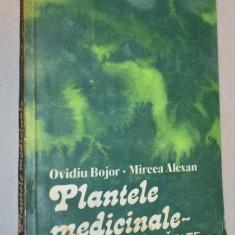 Plantele medicinale - izvor de sanatate - Ovidiu Bojor - Mircea Alexan