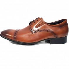 Pantofi eleganti barbati, din piele naturala, marca Eldemas, culoare maro, marimea 39 - Pantofi barbat