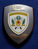 Placheta militara - Academia militara elena - stema