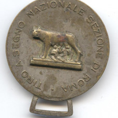 TIR - CONCURS SPORTIV Medalie veche Italia - Roma