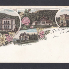 SALUTARI DIN SINAIA VILLA ALEXANDRU GHICA OTETELESANU BUDISTEANU BLAREMBERG - Carte Postala Muntenia pana la 1904, Necirculata, Printata